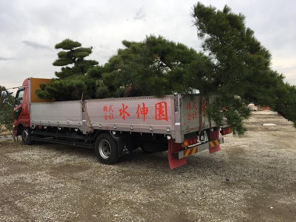 植木の運送
